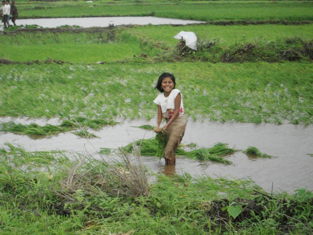 Kids have all the fun...and the smile says it all. Transplanting paddy in a field near Igatpuri.
